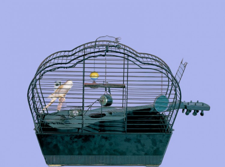 4Bird cage by Joe Jones (1964)